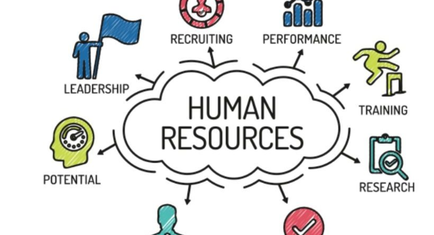 How to find human resource management software
